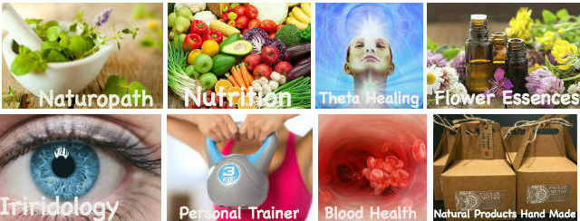 Naturopathy Nutrition Theta healing Flower Essences Iridology Nutrition Blood Health
