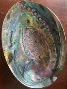 Abalone Healing Shell